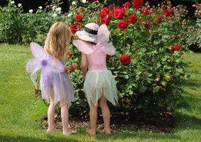 Девочки и куст роз